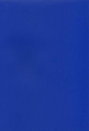 Синяя Шагрень -  MCM0008028