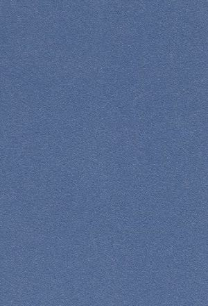 Сизый Перламутр -  MCM0011028