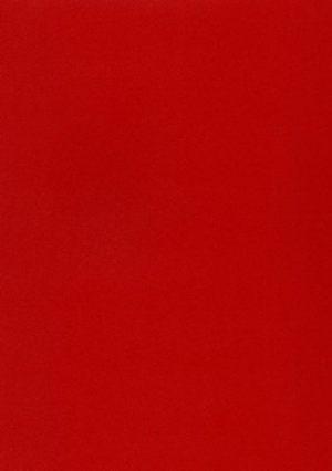 Красная шагрень - MCM0028091