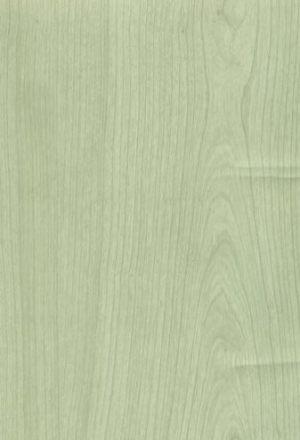 Ясень Зеленый -  MCW0047007