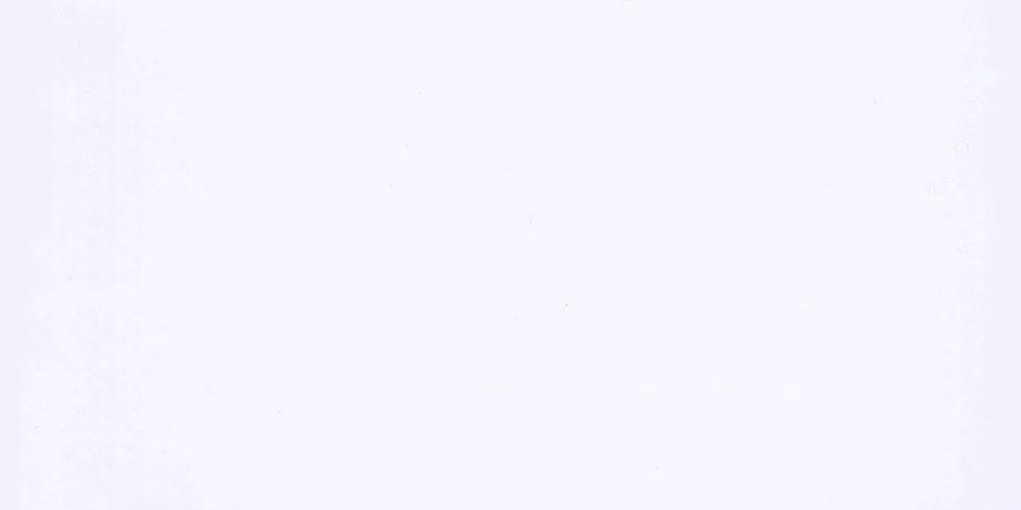 Белый Ультра Глянец - CC3014