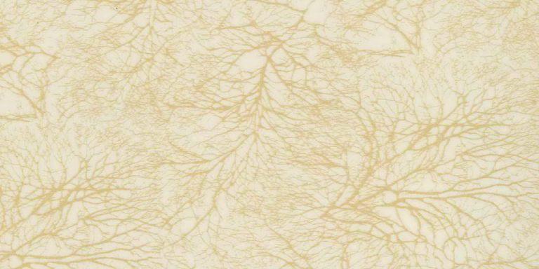 Золотое Дерево - CC5055
