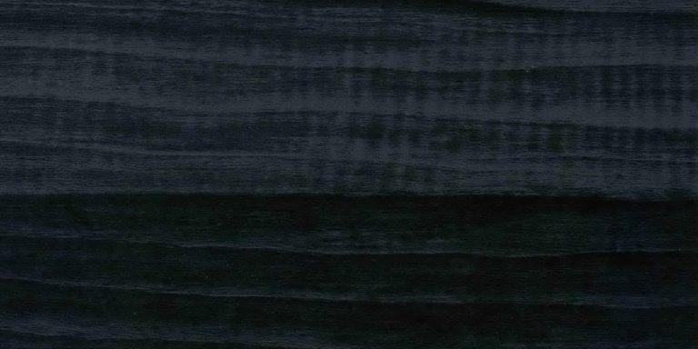 Ракушка Черная - CC7044