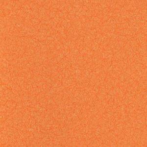 202 солнечный мандарин